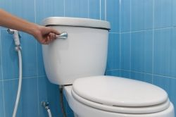 The ultimate guide of buying a Toilet