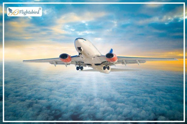 Find BOS to DCA Flights Airline Tickets