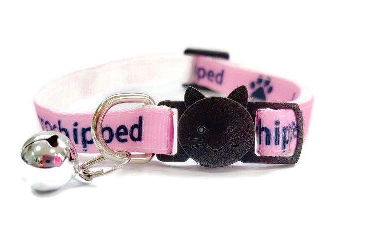 I Am Microchipped' Cat Collar (Pink)