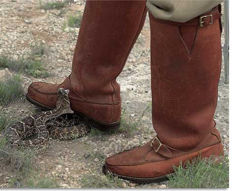 Snake Proof Boots for Hunting