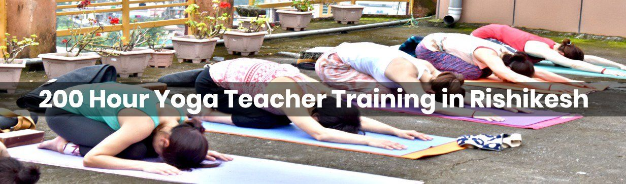 Yoga Teacher Training in Rishikesh, India | 200 Hour Yoga ttc in Rishikesh