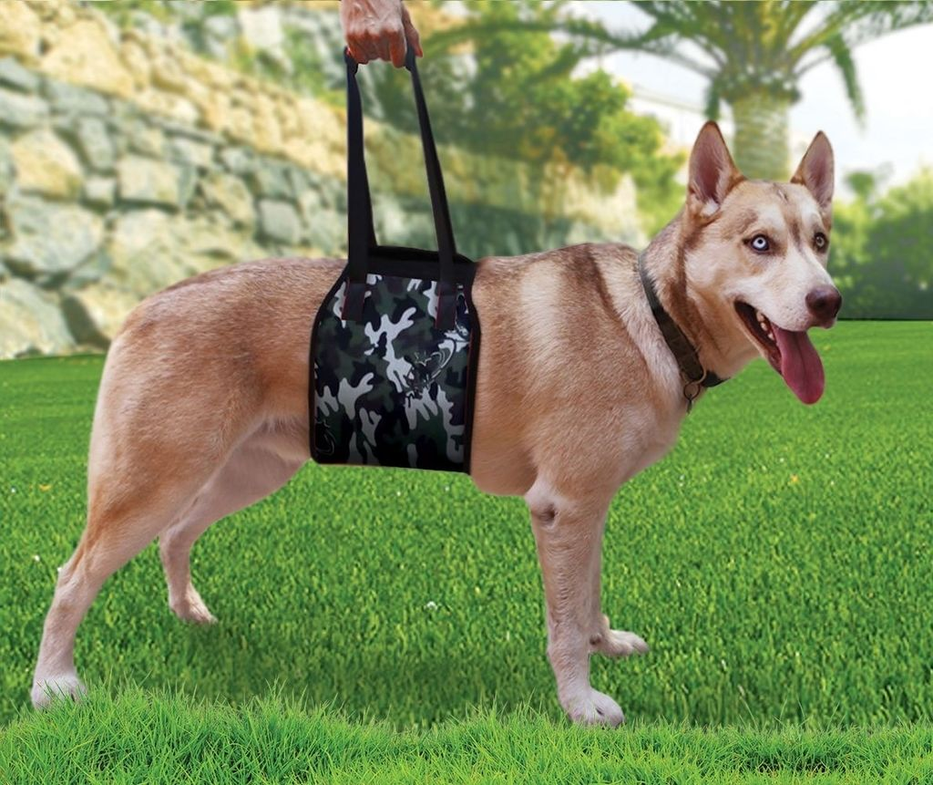 Lift Harnesses for Big Dogs