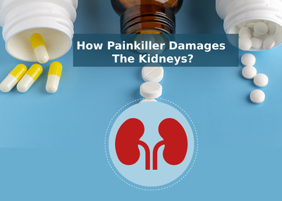 How painkiller damages the kidneys?