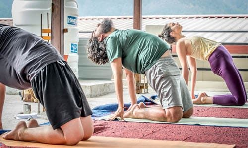 Yoga Teacher Training India - Shiva Tattva Yoga, Rishikesh