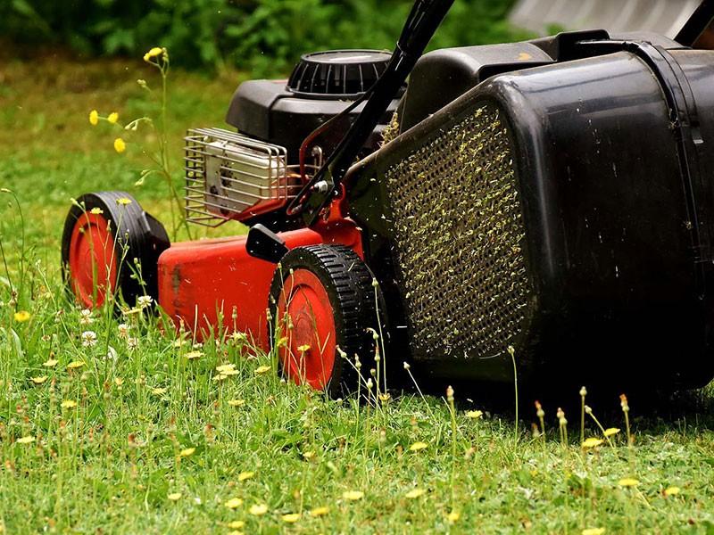 Alpine Naturescapes, Lawn care, pest control Salem UT