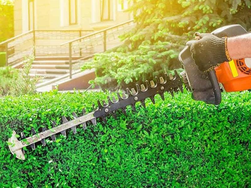 Alpine Naturescapes, Lawn care, pest control Springville UT
