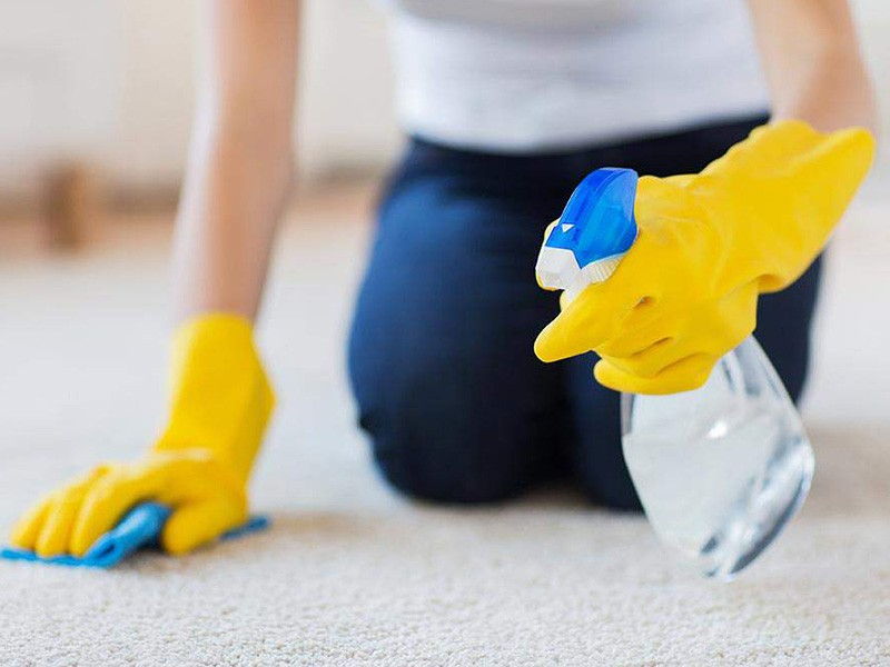 Hen's Dry Carpet and Upholstery Cleaning services Murrieta CA