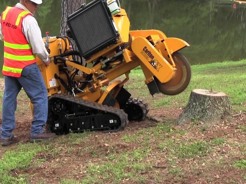 Tree Trimmer Roswell GA
