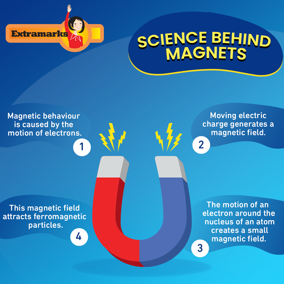 Get the Best Study Material for ICSE Physics for Class 7