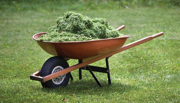 Gardening with garden carts