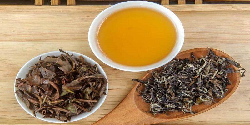 8 Benefits of Oolong Tea for your Health - Organic Tea