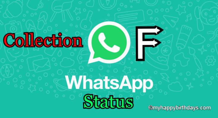 Best WhatsApp Status Collection   WhatsApp Best Status, Quotes