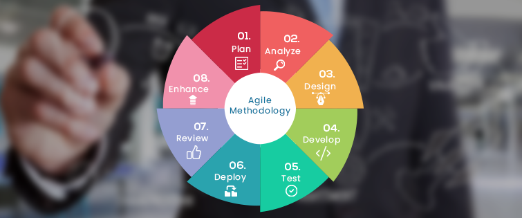 Why Agile? Why Software Development Companies Use This Methodology?