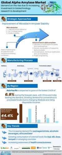 Alpha Amylase Market 2019-2025 Overview by Types, Application, Top Manufacturers, Demand, Production, Development Trends, End-User & Future Growth Analysis « MarketersMEDIA – Press Release Distribution Services – News Release Distribution Services