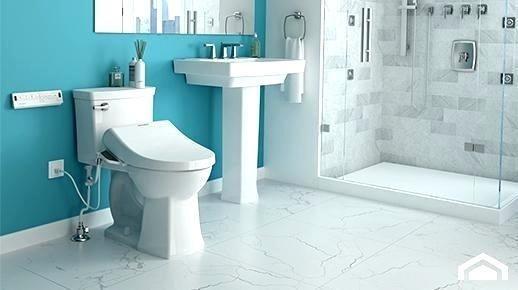 Essentials of the Bidet Toilet