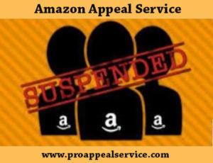 Amazon Suspension Appeal service