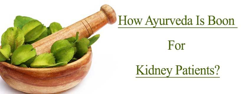 How Ayurveda Is Boon For Kidney Patients?