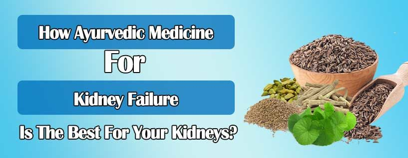 How Ayurvedic Medicine For Kidney Failure Is The Best For Your Kidneys?
