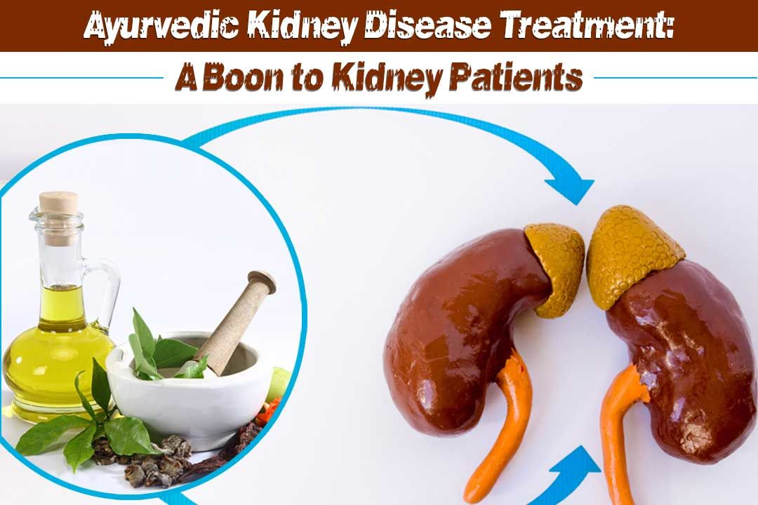 Ayurvedic Kidney Disease Treatment: A Boon to Kidney Patients