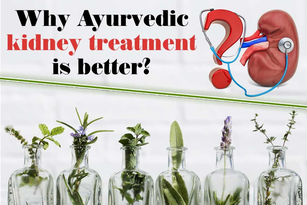 Why is Ayurvedic kidney treatment better?