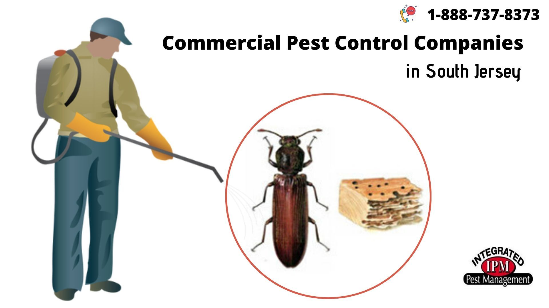 Commercial Pest Control Companies in South Jersey - JustPaste.it