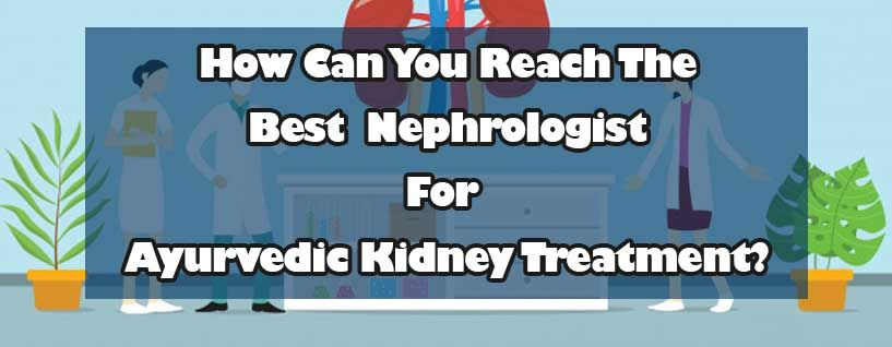 How Can You Reach The Best Nephrologist For Ayurvedic Kidney Treatment?