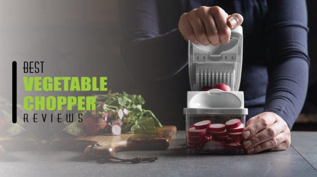 Best Vegetable Chopper Reviews