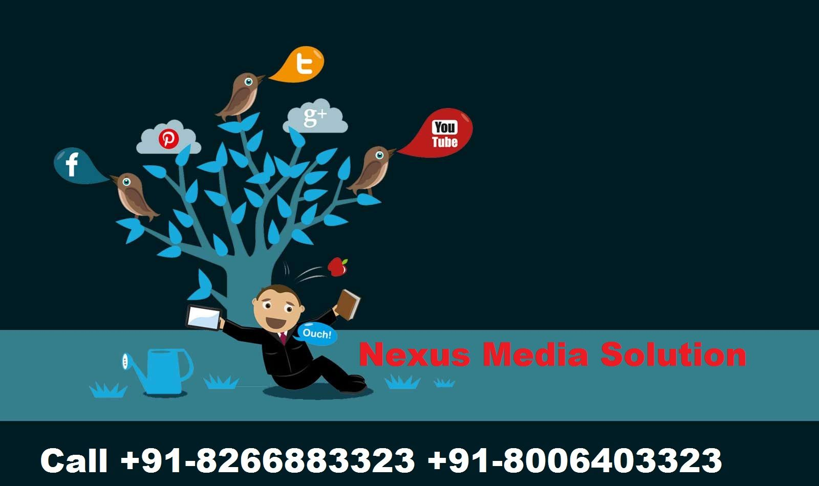 Website designing Company Haridwar | +91-8006403323 | Web Design Haridwar