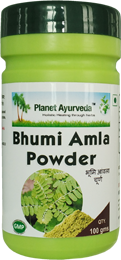 Bhumi Amla (Phyllanthus niruri) - Benefits, Uses and Side effects