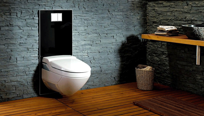 Install a Bidet Toilet Seat on a Wall Hung Toilet