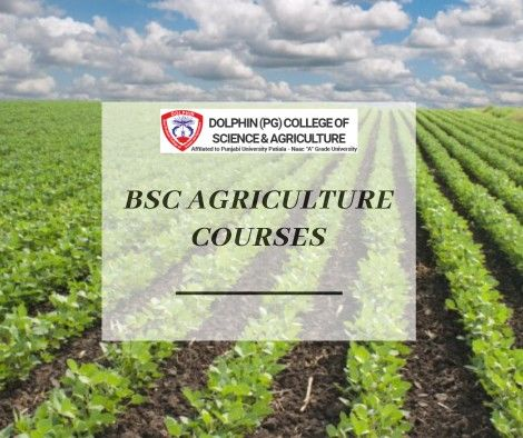 BSC Agriculture Courses