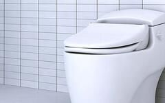 A Toilet With Bidet - An Easy Upgrade for Your Toilet