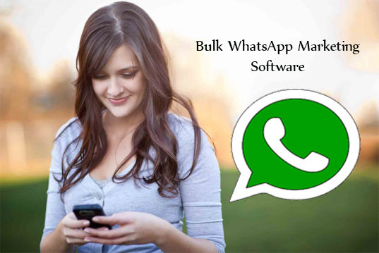 Bulk WhatsApp Marketing Software | Best WhatsApp Marketing Messenger