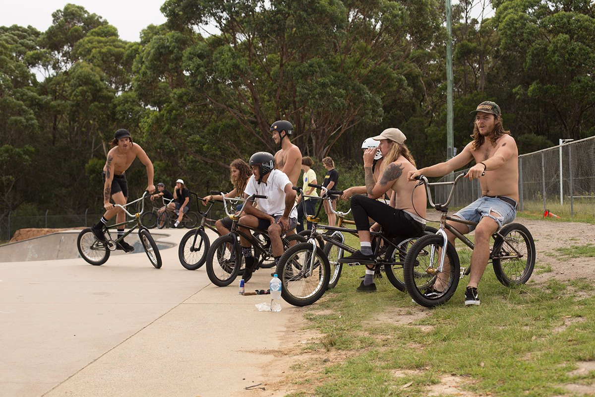 Guide to BMX Freestyle Bikes