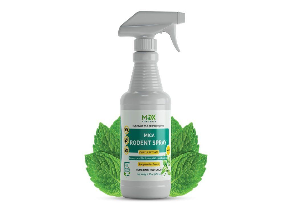 MDXConcepts — Amazon.com:  Rodent Spray