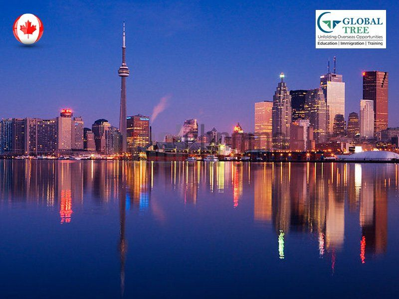 Canada Immigration Express Entry Consultants – Global Tree