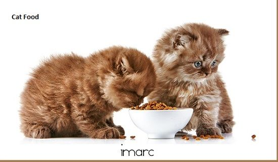 Cat Food Market Projected to Grow at a CAGR of 2.6% During 2018-2023 - Super Market Research