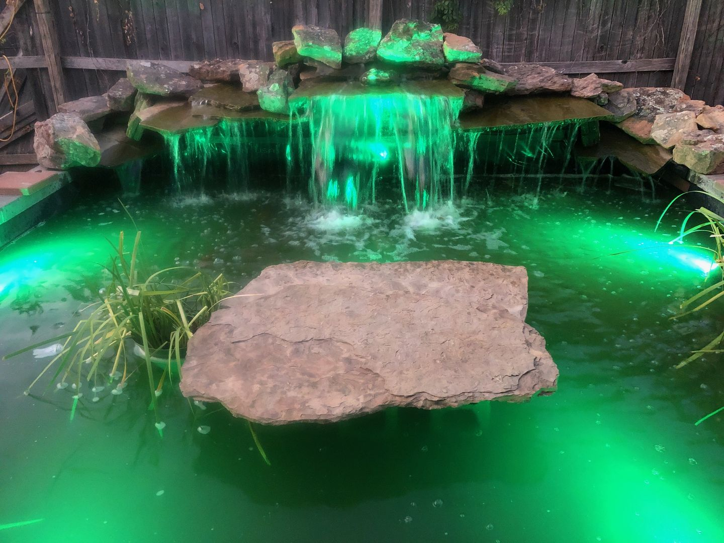 Color Changing LED's for pond fountains