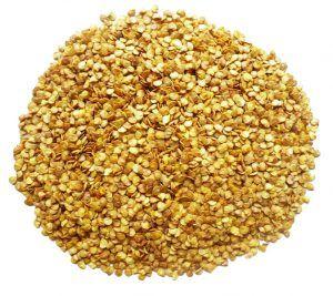 Chilli Seed  Pramoda Exim Corporation
