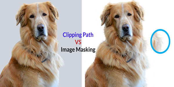 Clipping Path vs Image Masking: What's the Difference?