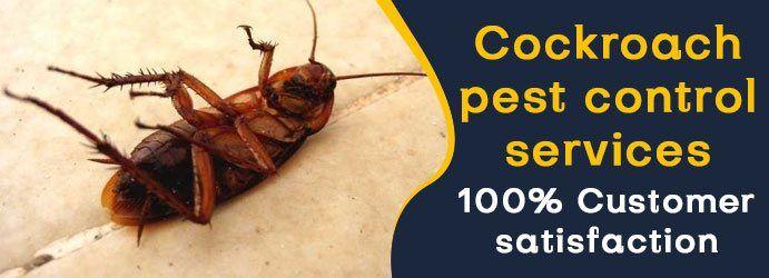 Pest Control Brisbane | 1800 122 695 | Pest Control Services | 7 Days