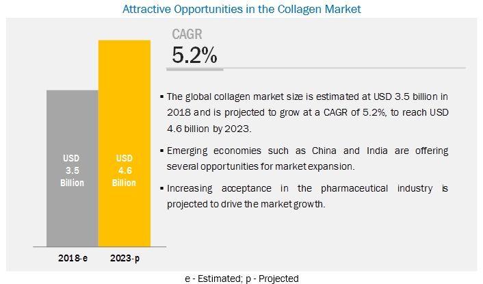 Collagen Market by Product Type, Application, Region - 2023 | MarketsandMarkets