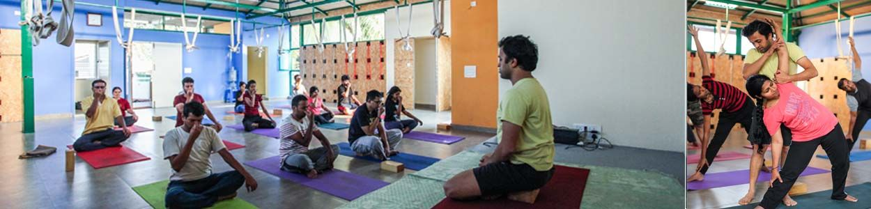 Yoga Courses in Bangalore | Yoga Centers – Yogavijnana
