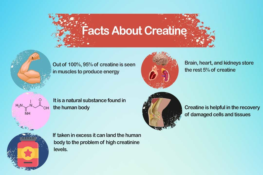Why Creatine 101 Is Recommended To Athletes And Gym Goers?