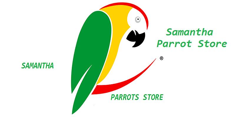 samantha parrotstore -