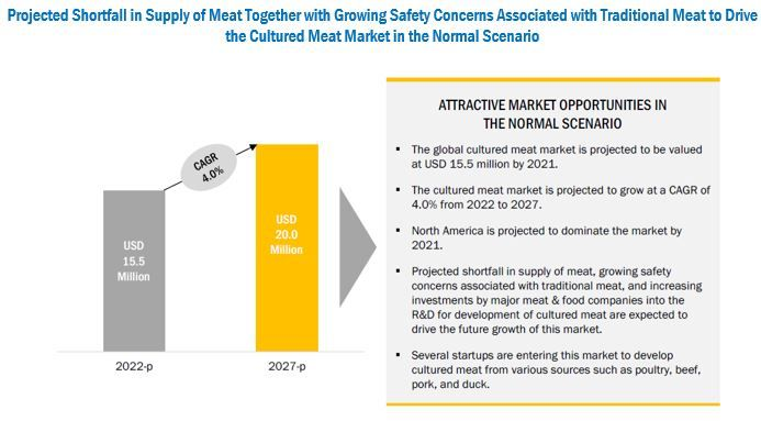 Cultured Meat Market by End Use & Source - Global Forecast 2027 | MarketsandMarkets
