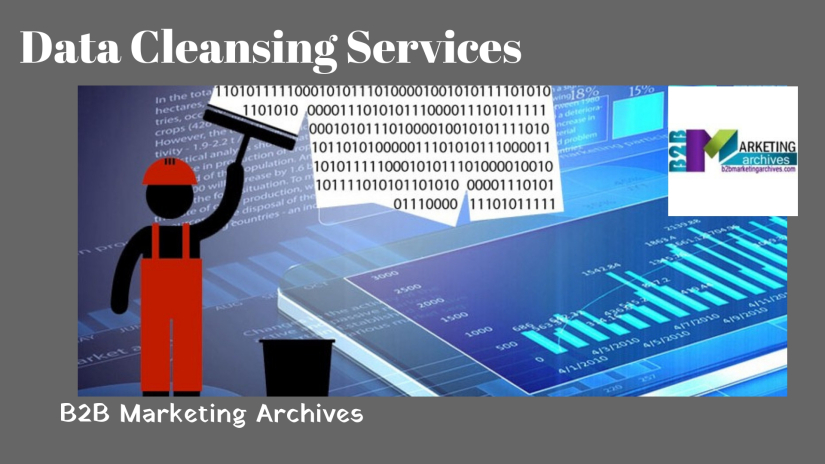 Data Cleansing Companies