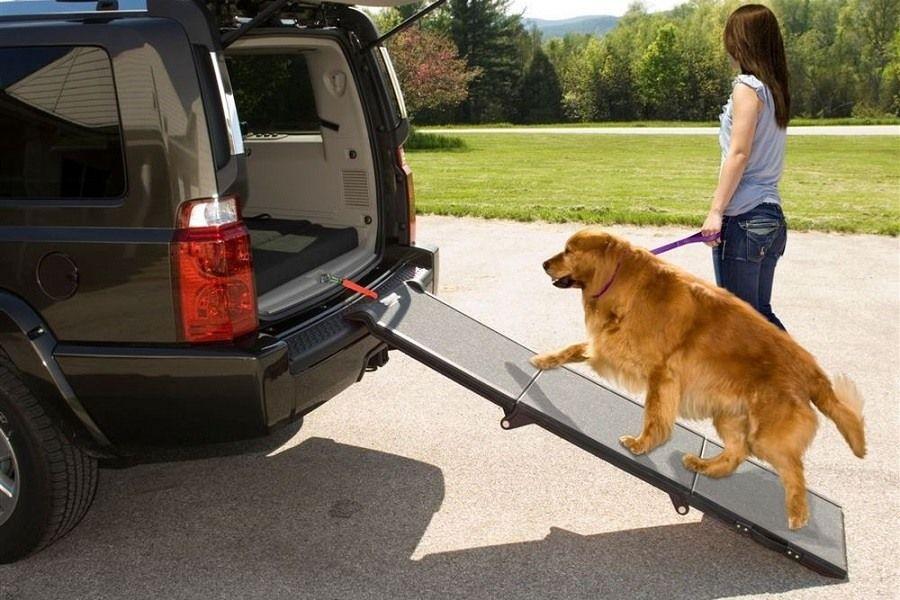 Pet Gear Tri-Fold Portable Ramp Review | PetsOnJourney.com