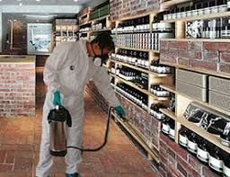 Why Pest Control at Warehouse is Important