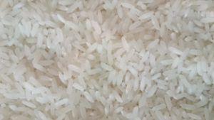 Short Grain Rice Exporter, Supplier, Manufacturer in India
